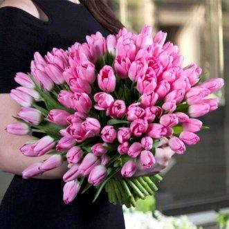 101 розовый тюльпан